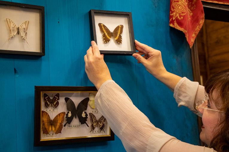 Mitarbeiterin hängt Schmetterlinge auf